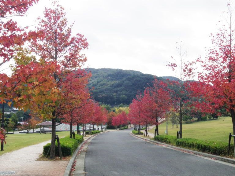 紅葉淡路島公園
